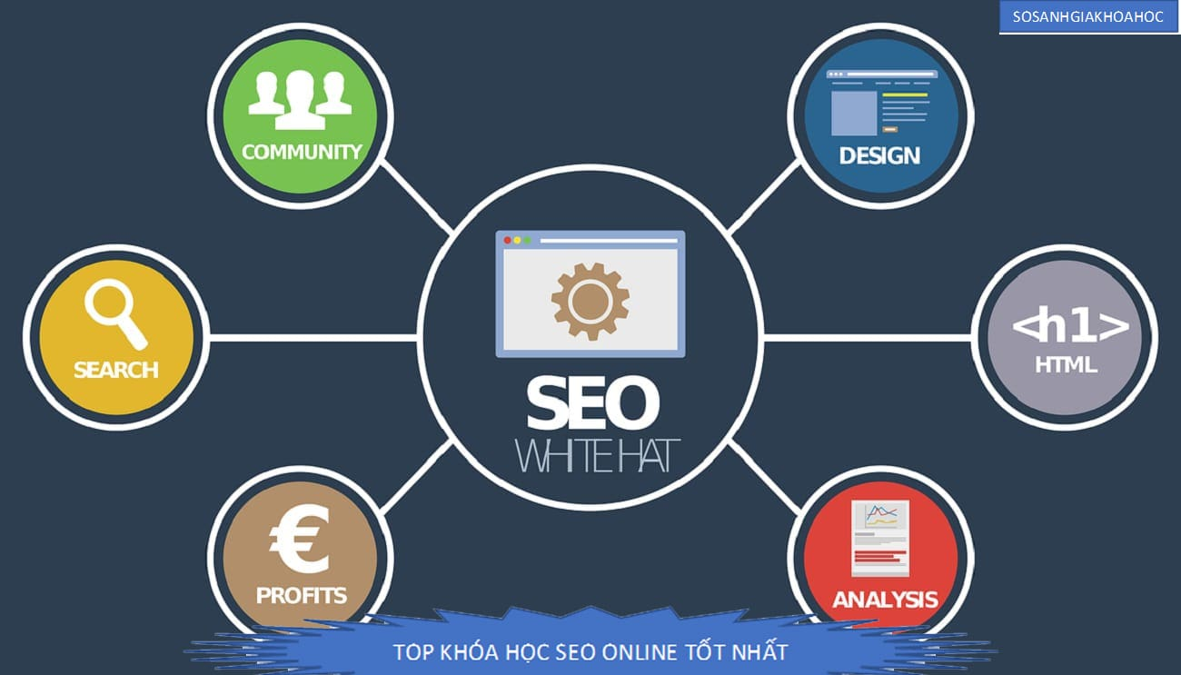 Top 7 khóa học Seo Marketing online tốt nhất {Year}