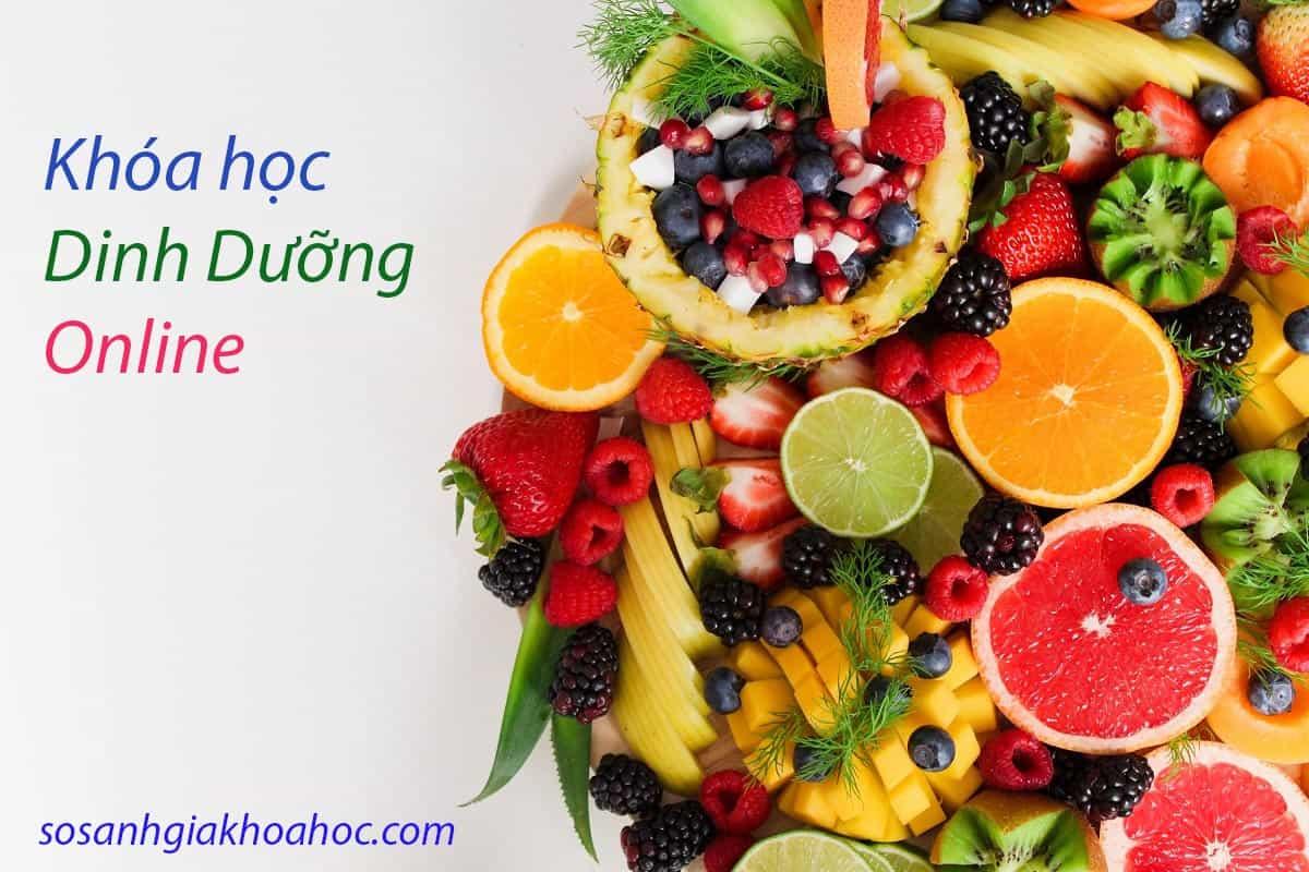 Top 4 khóa học về dinh dưỡng online thực tiễn tốt nhất {Year}